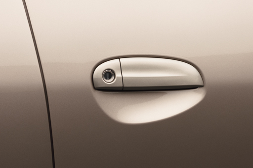 Chromed door handle